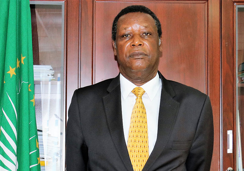 Appointment of former President Pierre Buyoya as the Special Representative of the Chairperson of the African Union Commission and Head of AFISMA