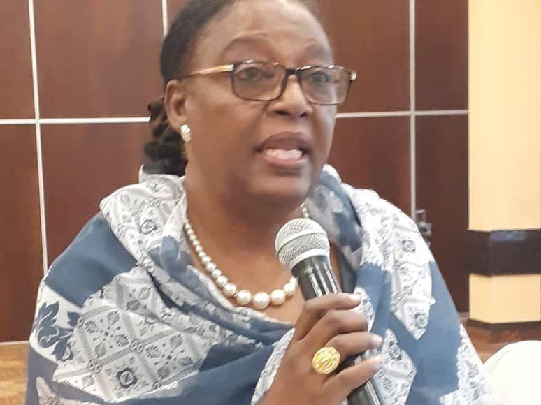Mrs D Afaf Ahmed YAHYA, experte , de l'université de Khartoum a partagé l'expérience du Soudan et de l'engagement des femmes.