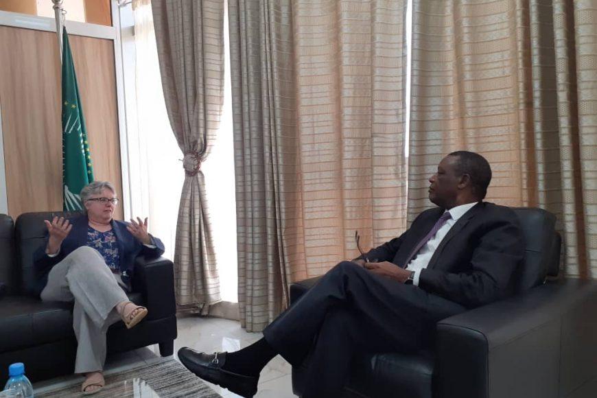 SEM Pierre Buyoya, HR de l'UA pour le Mali et le Sahel ( MISAHEL) a reçu en audience Madame Joanne Adamson -13 mars 2020