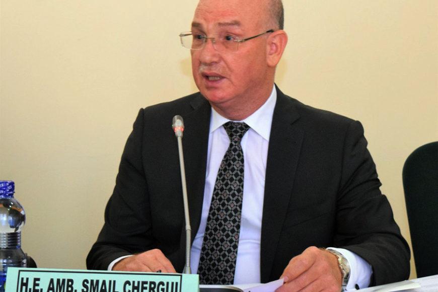Ambassadeur Smail Chergui : Commissaire à la paix et à la sécurité de l'Union africaine