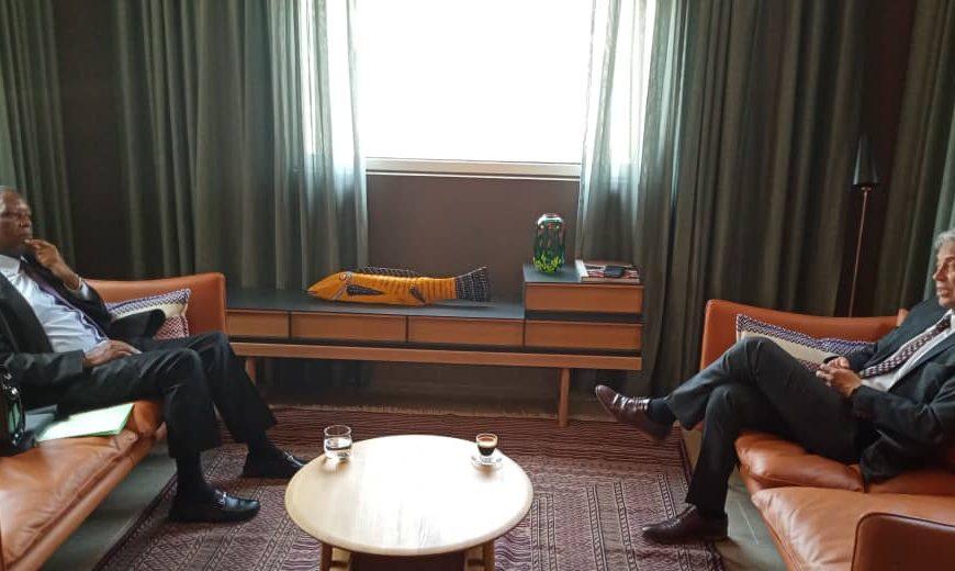 Audience à l'Ambassade de Norvège : l'Ambassadeur de Norvège s'entretient avec le Haut Représentant de l'Union africaine pour le Mali et le Sahel